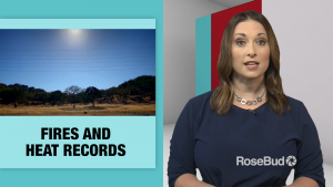 Fires and Heat Records